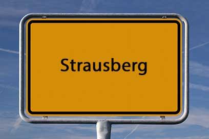 Sicherheitsdienst Strausberg